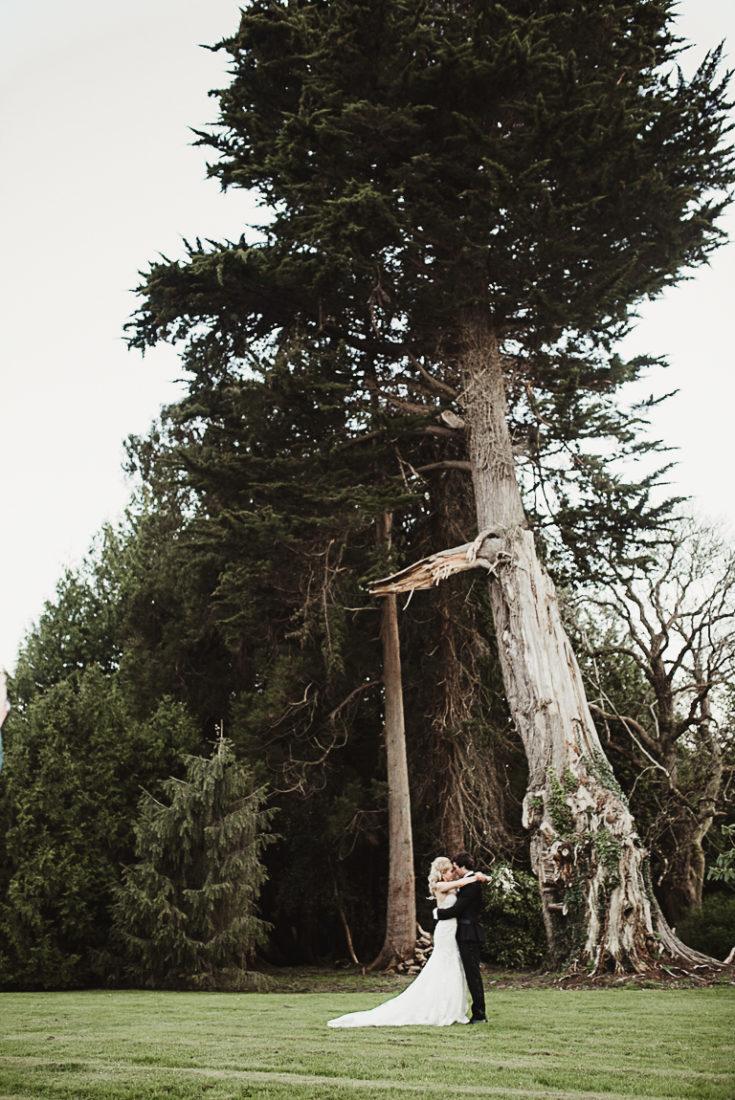 Newlyweds under the large tree