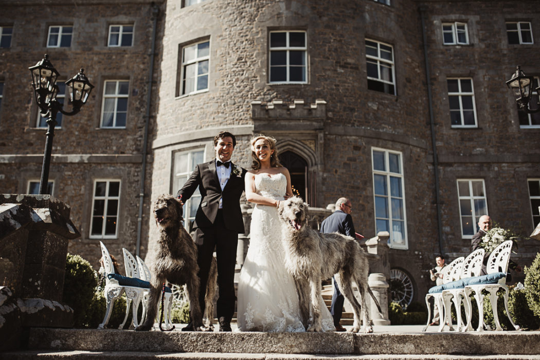 Newlyweds with dogs in Markree Castle