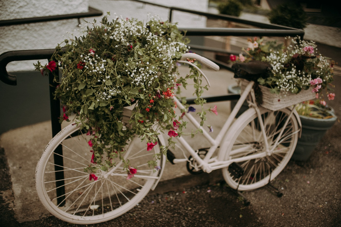 A bicycle parked in front of a flower